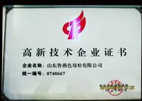 鲁燕-高新技术企业
